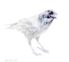 Raven silhouette by Sandra Johnston