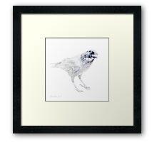 Raven silhouette Framed Print