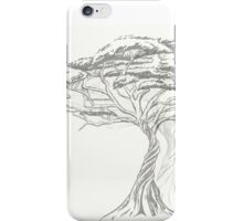 Acacia Shadow , black and white beautiful zen tree  iPhone Case/Skin