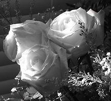 Wedded Peace by Dale Ramirez