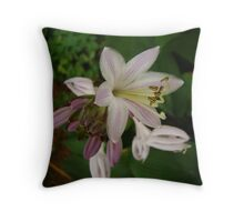 Clarity in Nature Throw Pillow