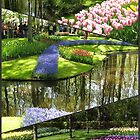 Tulip Time - Keukenhof Collage by MidnightMelody