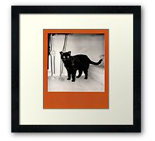 Cat with Owner Framed Print