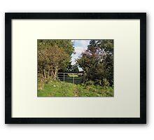 Irish farm Framed Print