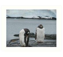 Penguin I Art Print