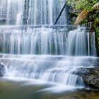 Lady Barron Falls Tasmania by strangers