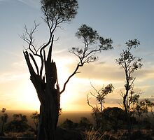 Mt. Oxley by Ross James