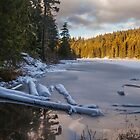 Frozen Lost Lake - Whistler Canada by Ron Finkel