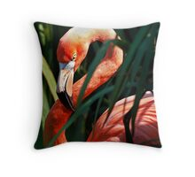 Avian Contrapposto Throw Pillow