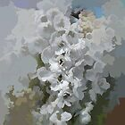 abstract of White Hollyhocks by hilarydougill