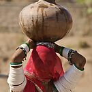 Bishnoi women at the well by inge