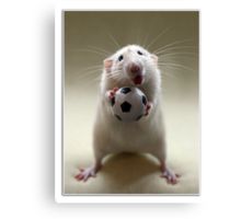 Learning how to play soccer. Canvas Print