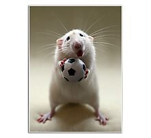 Learning how to play soccer. Photographic Print