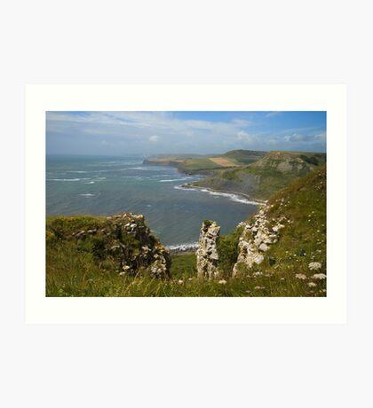 Coastal View Art Print