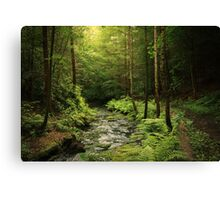 Loki's Forest Canvas Print