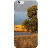 Tree in golden light iPhone Case/Skin