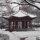 Tapgol Park with Fresh Snow by Christian Eccleston