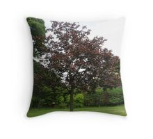 Uncommon Red Sycamore Throw Pillow