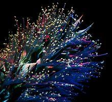 UV Induced Bio-luminescence 5 by AKunde