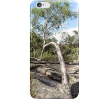 Curvature Gumtree iPhone Case/Skin