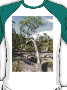 Curvature Gumtree T-Shirt