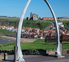 whalebone arch, whitby by dougie1