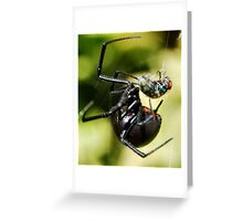 The Black Widow and The Fly Greeting Card