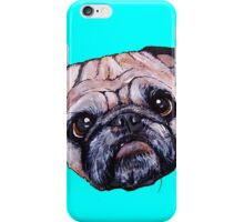 Butch the Pug - Cyan iPhone Case/Skin