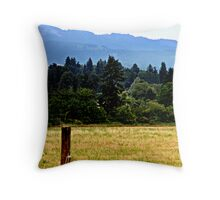 Lone Fence Post Throw Pillow