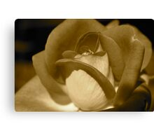 Faded Canvas Print