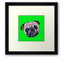Butch the Pug - Green Framed Print