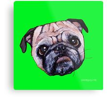 Butch the Pug - Green Metal Print