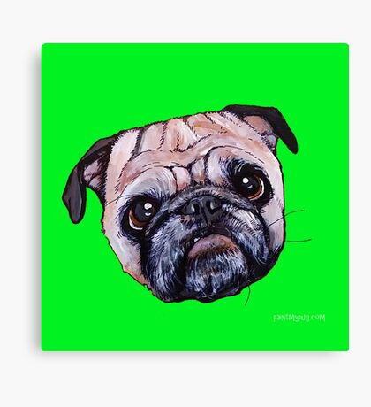 Butch the Pug - Green Canvas Print