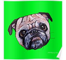 Butch the Pug - Green Poster