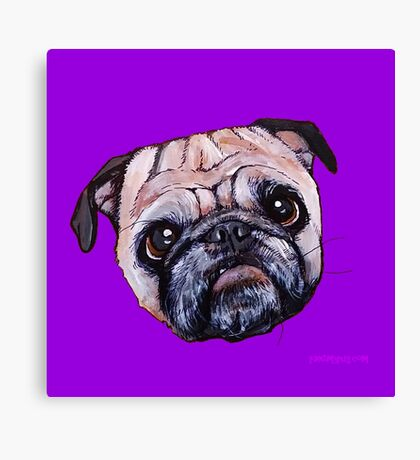 Butch the Pug - Purple Canvas Print