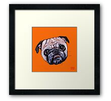 Butch the Pug - Orange Framed Print