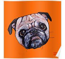 Butch the Pug - Orange Poster