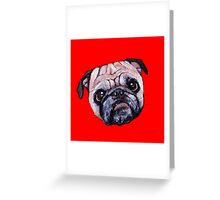 Butch the Pug - Red Greeting Card