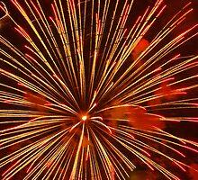 Fire Flower by Wendella Reeves