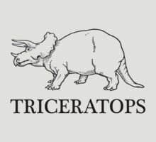 Triceratops by Xavier Shay