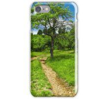 Rural road through meadow iPhone Case/Skin