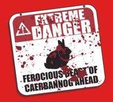 Extreme Danger by ZandryX