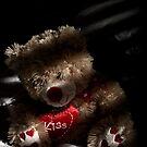 Lonesome Bear by Dave Reid