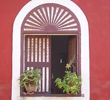 Window into Goan Life by JetRobins