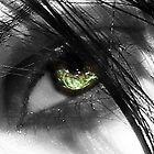 its all in the eyes... by dimarie