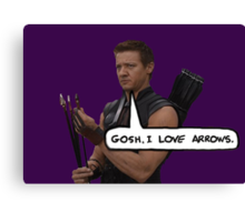 Renner Loves Arrows Canvas Print