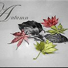 autumn by Ilapin