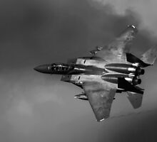 F15 in the Loop by Sue Dudley