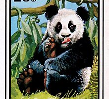 Panda Bear 1974 Postage Stamp Mongolia  by 31images