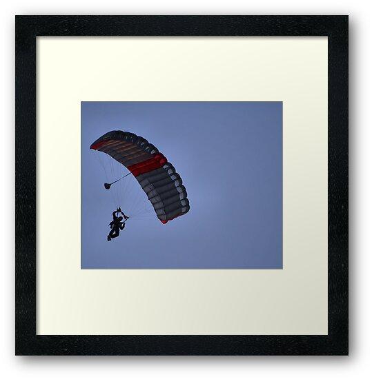 *...The wind beneath my wings....* by Susan van Zyl